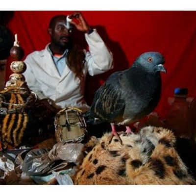 USA @Charms {Astrology} Traditional Healer Black Magic voodoo Lov...