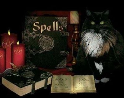 ?Lost Love Spell Caster